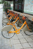 public bicycles in chengdu Stock Images