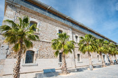 Public building with palms at high noon Royalty Free Stock Photo
