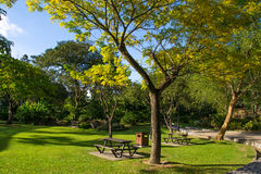 Public city park summer day. Picnic place. Weekend time concept. Royalty Free Stock Images