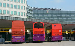 Public commuter buses at a busy bus terminal Royalty Free Stock Photo