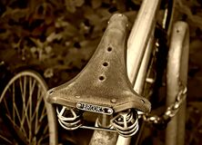 PUBLIC DOMAIN DEDICATION digionbew 10. june july 29-06-16 Bicycle saddle Brookes LOW  RES DSC03712 Royalty Free Stock Images