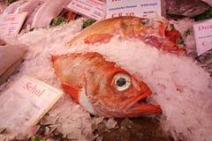 PUBLIC DOMAIN DEDICATION - Pixabay - digionbew 12. 15-07-16 Fish at the market LOW RES DSC06374 stock images