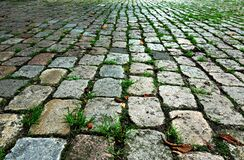 PUBLIC DOMAIN PIXABAY digionbew 10 june july Cobbles in the park LOW RES DSC02303 Royalty Free Stock Images