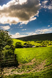 Public footpath on countryside Stock Photo