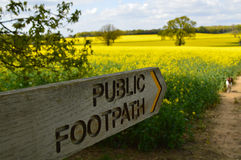 Public footpath sign in the English countryside. Public footpath sign in a rapeseed crop field in rural West Sussex in late Spring Stock Photo
