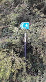 Public footpath sign in hedge. A public footpath sign in hedge Treeton Rotherham Royalty Free Stock Photography