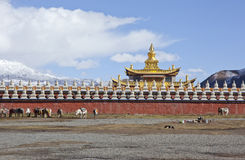 Public Gan Zi prefecture tower temple Stock Photography