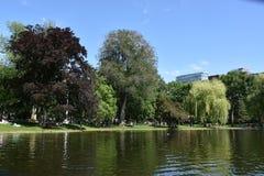 Public Garden in Boston, Massachusetts. USA stock photos