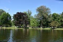 Public Garden in Boston, Massachusetts. USA royalty free stock photography