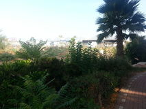 Public garden. A public park in my neighborhood in Rosh Ha`ayin, Israel Stock Photos