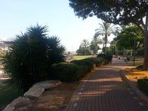 Public garden. A public park in my neighborhood in Rosh Ha`ayin, Israel Royalty Free Stock Photos