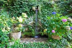 The public gardens of the Villa San Michele, Capri island, Mediterranean Sea, Italy Royalty Free Stock Images
