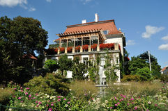 Flower house. A beautifull house in viena with more flower and green place Royalty Free Stock Images