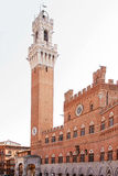 Public palace. In piazza del campo in Siena Tuscany Royalty Free Stock Photography