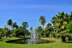 Public park. Royalty Free Stock Images
