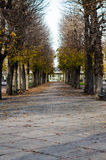 Public park at autumn, Vichy, France Stock Photography
