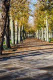 Public park at autumn, Vichy, France Royalty Free Stock Photography
