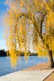 Public park at autumn, Vichy, France Stock Photo