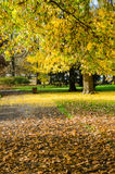 Public park at autumn, Vichy, France Stock Image