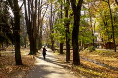 Public park in autumn - Vrnjacka Banja, Serbia. Vrnjacka Banja is a popular tourist destination in Serbia, a place that every year visit a millions of tourist royalty free stock photos