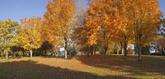 Public park Autumnl panorama Gresham Oregon. Stock Image