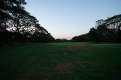 Public park so beautiful nature with sunset royalty free stock photo