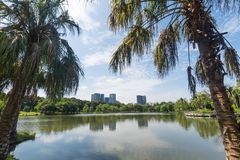 Public park in the big city. Place and outdoors concept. Nature. And landscape theme. Bangkok Thailand location royalty free stock photos