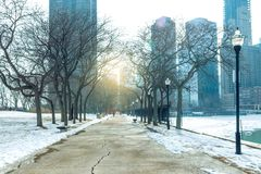 Chicago downtown public park royalty free stock photography