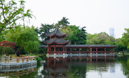 Public park in China. Girl stand in the public park and admire the view Stock Photos