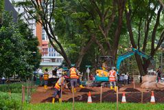 Public park developing works. Singapore. SINGAPORE - JAN 16, 2017: Workers work in public park in Singapore. Singapore is a major political, financial, cultural Royalty Free Stock Photography