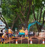Public park developing works. Singapore. SINGAPORE - JAN 16, 2017: Workers work in public park in Singapore. Singapore is a major political, financial, cultural Royalty Free Stock Images