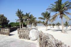 Public park in Dubai. UAE. Royalty Free Stock Photo