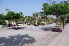 Public park in Dubai. UAE. Stock Photos