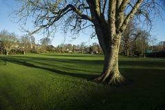 The public park in Duns, berwickshire, Scotland Stock Photography
