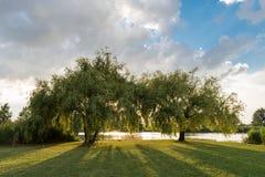 Public park in Ferrara city Stock Photography
