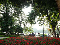 Public park and garden. Public park in Hanoi Royalty Free Stock Image