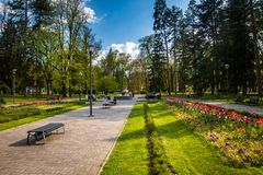 Public park and garden with tulips. In Vrnjacka Banja, Serbia stock photo