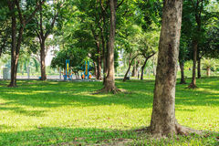 Public Park. Stock Photography