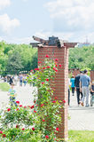 The public park Herastrau with red bush roses, green grass, blue clouds sky. Stock Image