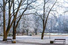 Public park in Jurmala, Latvia Royalty Free Stock Photo