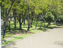 A public park. With lush green trees for city people Stock Photography