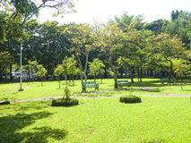 A public park. With lush green trees for city people Royalty Free Stock Photo