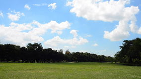 Public park and moving cloud. HD stock video footage