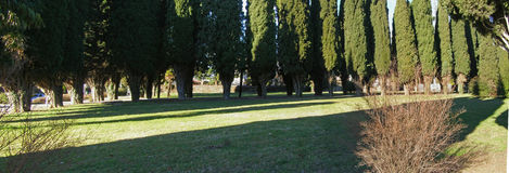 Public park panorama Royalty Free Stock Images