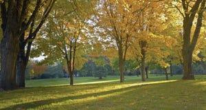 Public park panorama Gresham Oregon. Royalty Free Stock Photos