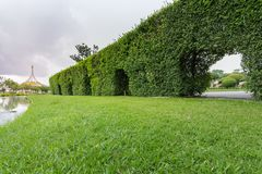 Public park. On a rainy day is going to fall Royalty Free Stock Photos