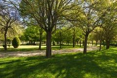 Public Park in Spring Stock Image