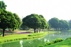 Public park at Suanluang Rama 9. Asia Thailand Flower and tree gardens of various colors and varieties. Beautiful public parkland Suan Luang R.9 in Bangkok stock photos