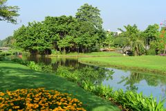 Public park at Suanluang Rama 9. Asia Thailand Flower and tree gardens of various colors and varieties. Beautiful public parkland Suan Luang R.9 in Bangkok stock images