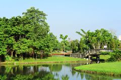 Public park at Suanluang Rama 9. Asia Thailand Flower and tree gardens of various colors and varieties. Beautiful public parkland Suan Luang R.9 in Bangkok royalty free stock image